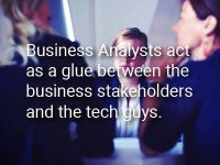 Business Analyst! When? What? Who? How?